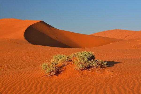 Namibia - Rundfahrt - Reise - Rundreise - Landschaft - Sossusvlei - Sanddünen - Sonnenaufgang