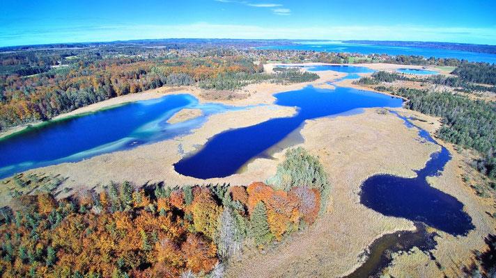 Drohnenfoto - Vogelperspektive - Drohne - Drohnenbild - Luftaufnahme - See - Blau - Farbenfroh - Sommer