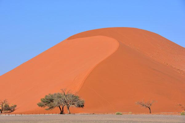 Namibia - Rundfahrt - Reise - Rundreise - Landschaft - Sossusvlei - Sanddünen - Düne 45
