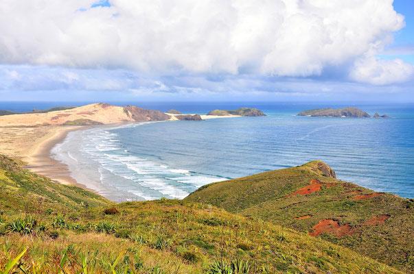 Neuseeland, Nordinsel, Küste, Sandstrand, Aussicht, Bucht, Cape Reinga