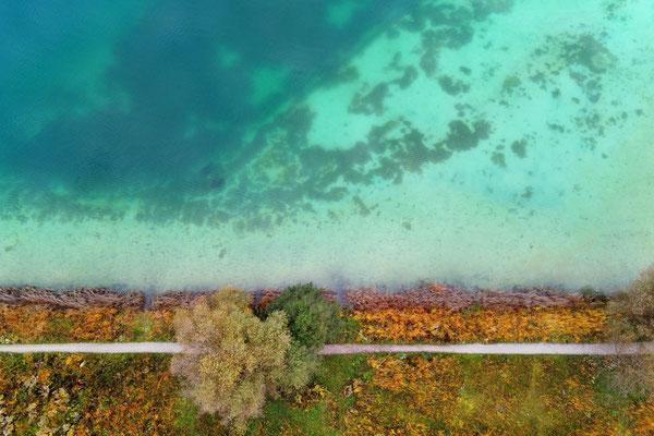 Drohnenfoto - Vogelperspektive - Drohne - Drohnenbild - Luftaufnahme - See - Sommer - Ufer - München - Messestadt Riem - BuGa See