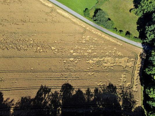 Vogelperspektive, Drohnenfoto, Drohnenbild, Luftaufnahme, Bayern, Feld, Landwirtschaft, Acker