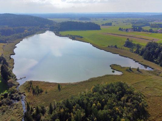 Drohnenfoto - Vogelperspektive - Drohne - Drohnenbild - Luftaufnahme - See - Harmatinger Weiher