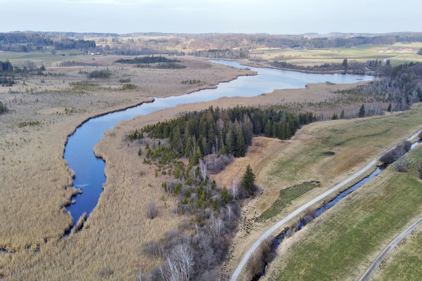 Drohnenfoto - Landschaft - Schilf - Vogelperspektive - Drohne - Drohnenbild - Luftaufnahme - Bayern - See - Maisinger See