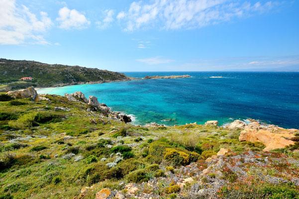 Sardinien, Sardegna, Landschaft, See, Küste, Bucht, Santa Teresa di Gullura