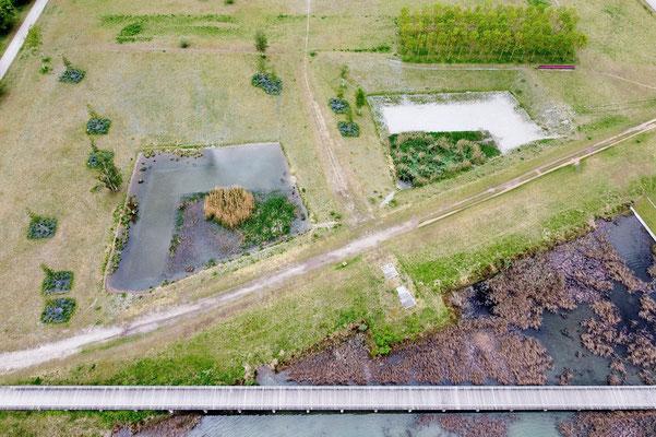 Drohnenfoto - Vogelperspektive - Drohne - Drohnenbild - Luftaufnahme - Fußweg - Brücke