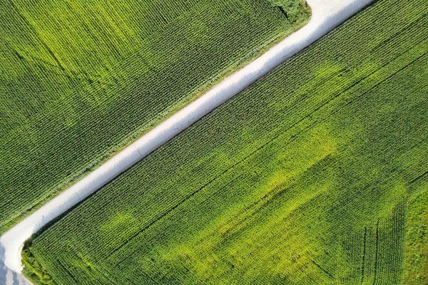 Drohnenfoto - Vogelperspektive - Drohne - Drohnenbild - Luftaufnahme - Straße - Feld