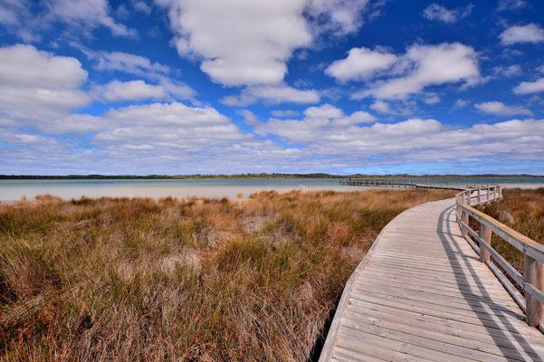 Australien, Australia, Westaustralia, Western Australia, Landschaft, Lake Clifton, Thrombolites