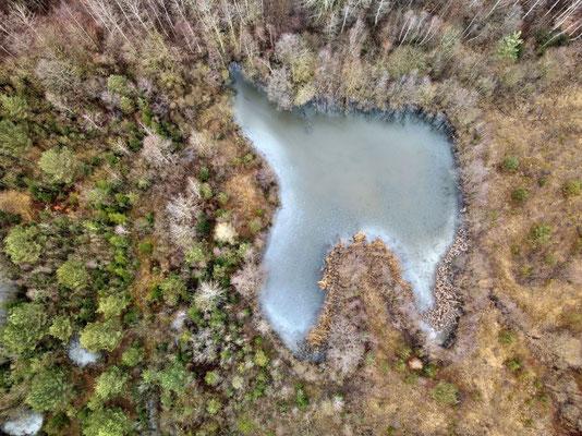 Drohnenfoto - Vogelperspektive - Drohne - Drohnenbild - Luftaufnahme - Winter - Zahn - See - Isen