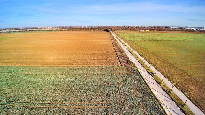Drohnenfoto - Vogelperspektive - Drohne - Drohnenbild - Luftaufnahme - Straße - Weg - Feld