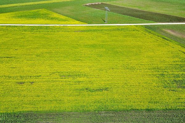 Vogelperspektive, Drohnenfoto, Drohnenbild, Luftaufnahme, Bayern, Feld, Grün, Sommer