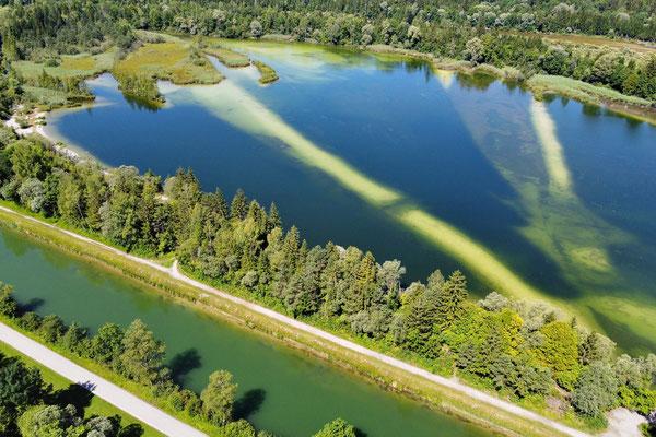 Drohnenfoto - Vogelperspektive - Drohne - Drohnenbild - Luftaufnahme - Fluss - See - Isar - Ickinger Weiher - Icking - Isarkanal