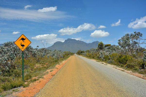 Australien, Australia, Westaustralia, Western Australia, Landschaft, Strasse, Stirling Range National Park