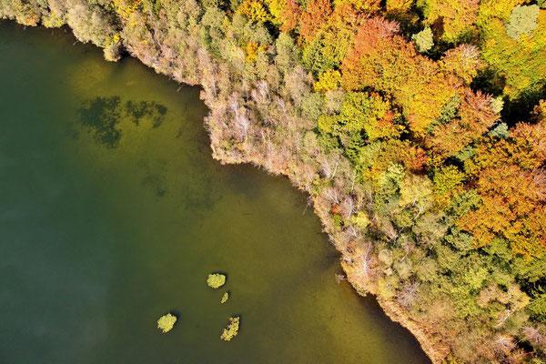 Drohnenfoto - Vogelperspektive - Drohne - Drohnenbild - Luftaufnahme - See - Sommer - Moosach - Stein See