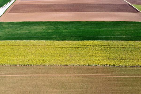 Vogelperspektive, Drohnenfoto, Drohnenbild, Luftaufnahme, Bayern, Feld, Grün, Braun, Gelb, Streifen, Sommer