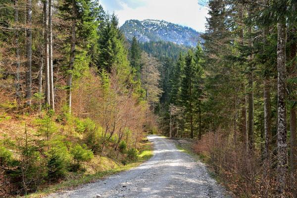 Bayern, Alpen, Wanderung, Berge, Landschasft, Rötelstein