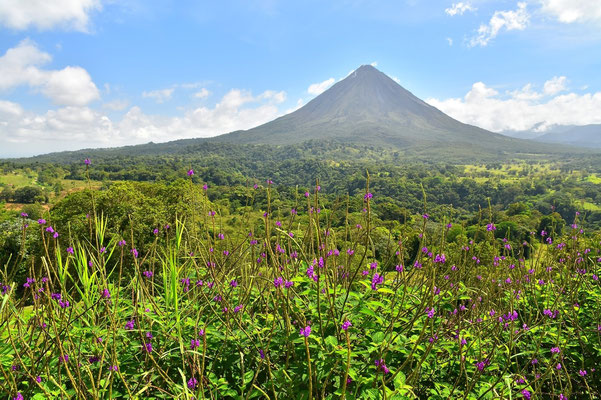 Pura Vida - Costa Rica - Vulkan Arenal
