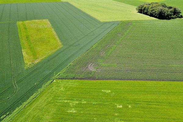 Vogelperspektive, Drohnenfoto, Drohnenbild, Luftaufnahme, Bayern, Feld, Muster, Acker