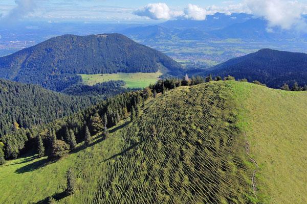 Vogelperspektive, Drohnenfoto, Drohnenbild, Luftaufnahme, Berge, Alpen, Sommer, Bad Feilnbach, Wanderung, Chiemgau, Gipfel Mitterberg