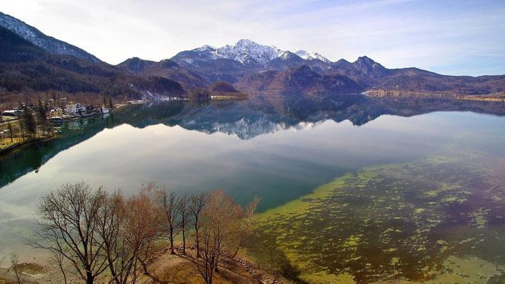 Vogelperspektive, Drohnenfoto, Drohnenbild, Luftaufnahme, Bäume, Wald, Berge, Alpen beim Kochelsee, Spiegelung