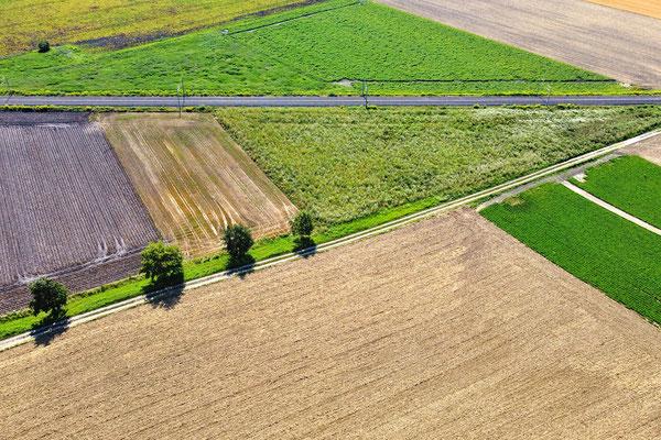 Vogelperspektive, Drohnenfoto, Drohnenbild, Luftaufnahme, Bayern, Feld, Grün, Braun, Streifen, Parzellen, Sommer
