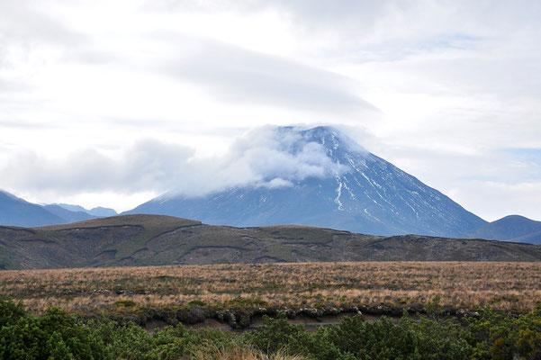 Neuseeland, Nordinsel, Wanderung, Berg, Nebel