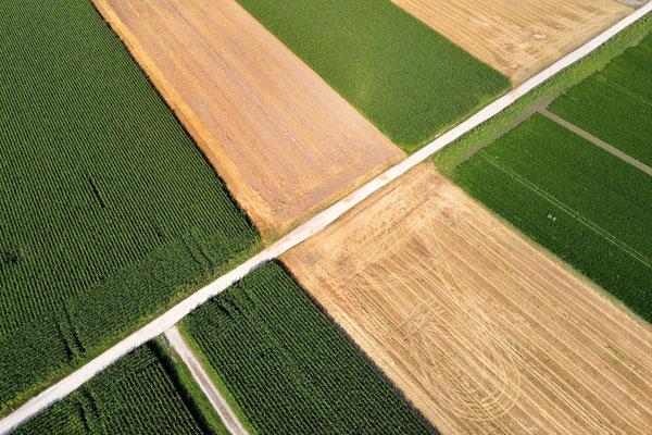 Vogelperspektive, Drohnenfoto, Drohnenbild, Luftaufnahme, Bayern, Feld, Grün, Braun, Streifen, Sommer, Äcker, Land