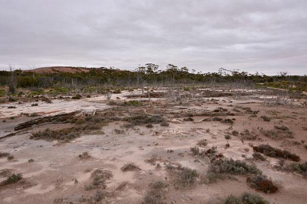 Australien, Australia, Westaustralia, Western Australia, Landschaft, Grau, Felsen