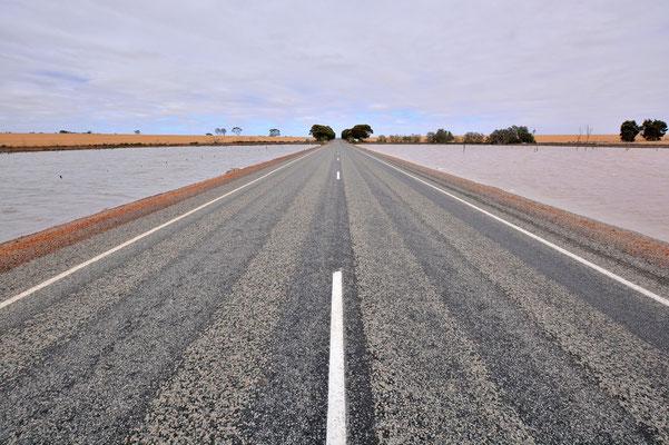 Australien, Australia, Westaustralia, Western Australia, Landschaft, Strasse, See, Pink Lake