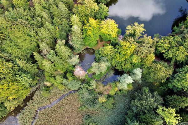 Vogelperspektive, Drohnenfoto, Drohnenbild, Luftaufnahme, Thanninger Weiher, Egling, Wald, See