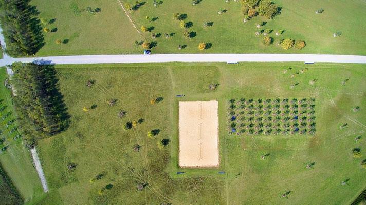 Vogelperspektive, Drohnenfoto, Drohnenbild, Schattenspiel, Luftaufnahme, Bayern, Feld, Grün, Streifen, Bäume, Schatten, Muster, Flecken