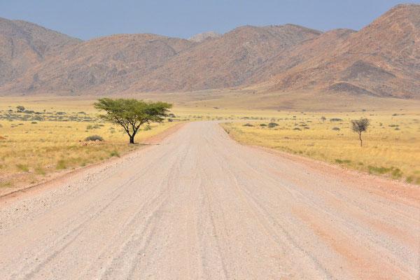 Namibia - Rundfahrt - Reise - Rundreise - Landschaft - Namib Naukluft Park