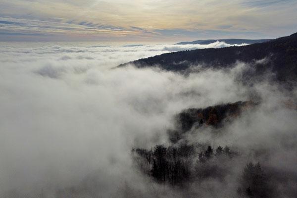 Vogelperspektive, Drohnenfoto, Drohnenbild, Luftaufnahme, Bäume, Wald von oben, Rhön, Nebel, Wolken, Fliegen