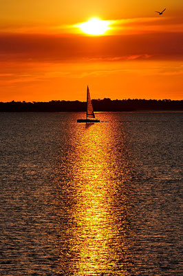 Australien, Australia, Ostaustralien, Ostküste, Queensland, Landschaft, Wasser, See, Meer, Sonnenuntergang, Seegelboot, Wellen, Streifen