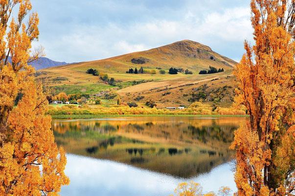 Neuseeland, Südinsel, See, Queenstown, Spiegelung, Herbst