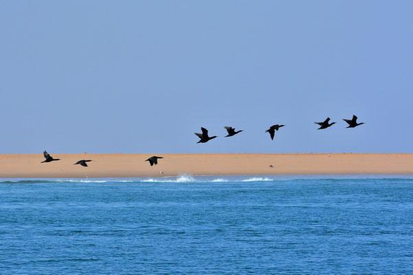 Namibia - Rundfahrt - Reise - Rundreise - Landschaft - Walvis Bay - Atlantischer Ozean