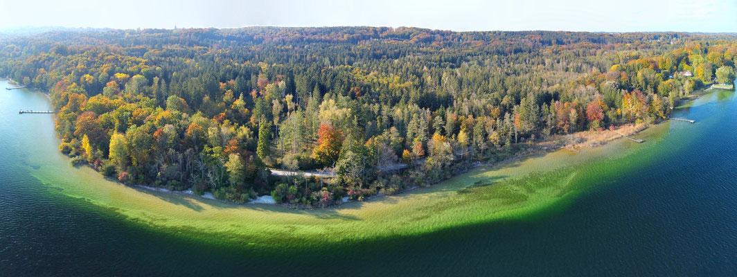 Panorama, Drohnenfoto, Starnberger See, Insel, Muster, Formationen, Sommer, Grün, Türkis, Ufer, Wald