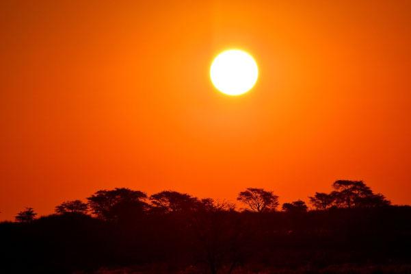 Namibia - Rundfahrt - Reise - Rundreise - Landschaft - Kalahari - Sonnenuntergang