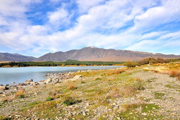 Neuseeland, Südinsel, Lake Tekapo