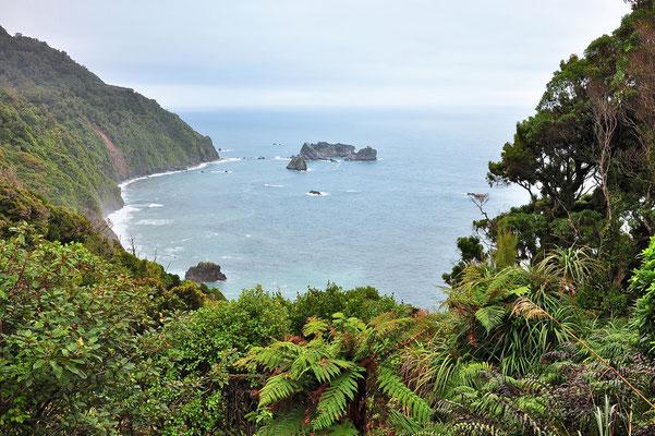 Neuseeland, Südinsel, Wald, See, Insel, Küste