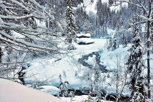 Bayern, Alpen, Berge, Landschaft, Wanderung, Kreuth