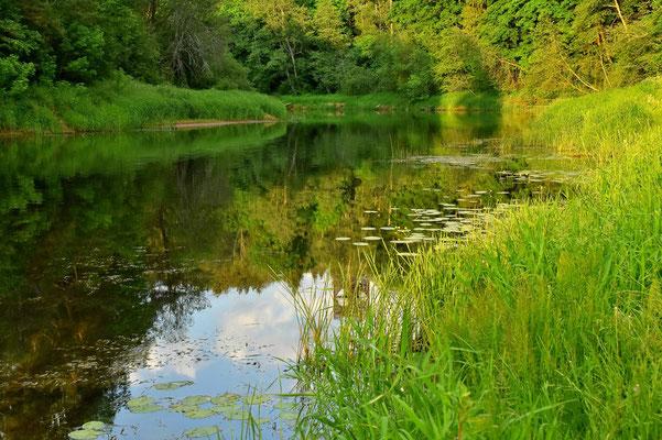 Litauen, Rundreise, Landschaft, Wanderung, See,  Anykščiai