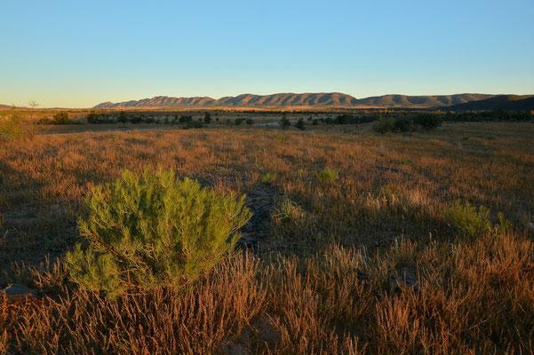 Australien, Australia, Südaustralien, South Australia, Landschaft, Sonnenuntergang, Flinders Ranges