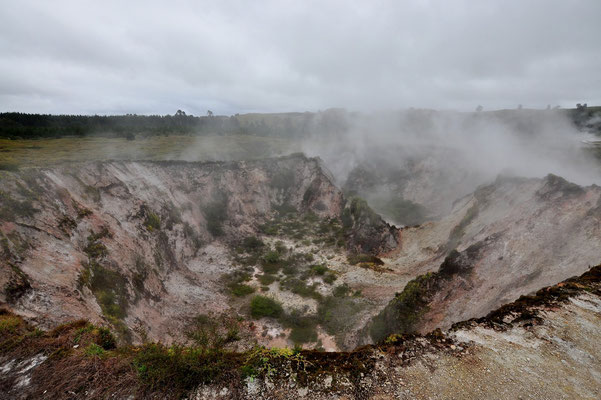 Neuseeland, Nordinsel, Vulkan, Geothermisch, Dampf, Nebel, Craters of the Moon