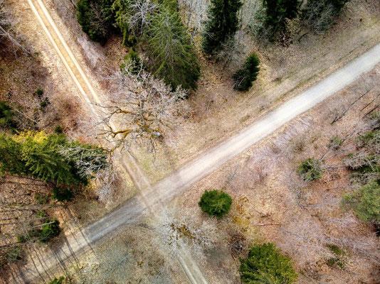 Drohnenfoto - Vogelperspektive - Drohne - Drohnenbild - Luftaufnahme - Weg - Wanderweg - Wald