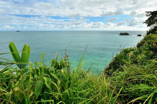 Pura Vida - Costa Rica - Manuel Antonio Nationalpark