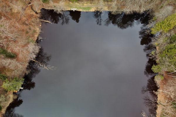 Drohnenfoto - Landschaft - Vogelperspektive - Drohne - Drohnenbild - Herbst - Luftaufnahme - See - Quadratisch - Muster - Ufer - Pähl - Hochschloßweiher