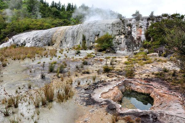 Neuseeland, Nordinsel, Vulkan, Geothermisch, Dampf, Nebel, See, Orakei Korako