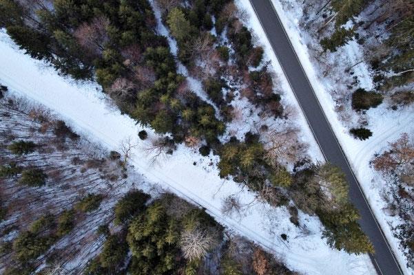 Drohnenfoto - Vogelperspektive - Drohne - Drohnenbild - Luftaufnahme - Straße - Wald - Winter - Schnee
