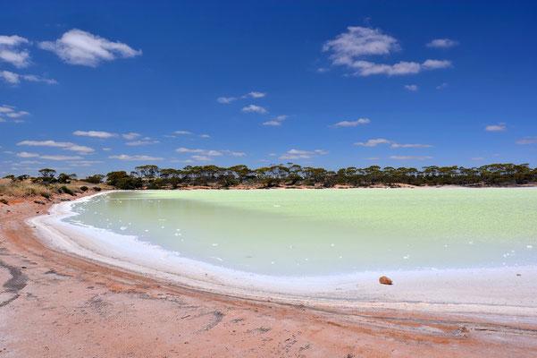Australien, Australia, Westaustralia, Western Australia, Landschaft, See, Gelb, Grün,Salzsee, Salt Lakes
